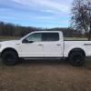 Ray's F150 w/ Fuel Wheels and Nitto Tires